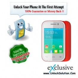 Alcatel One Touch 1013 Unlocking